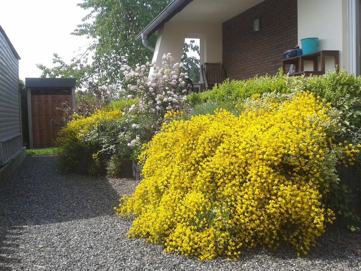 Gärtner Gartenbau Landschaftsbau Wessler